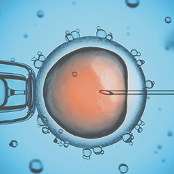 fertility-treatment-ivf